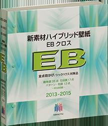 2013-2015 EBクロス